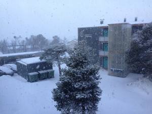 sne:-)